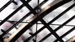 Tout S'accélère - Un film de Gilles Vernet - Bande annonce