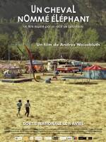 Un cheval nommé éléphant - Affiche