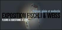EXPOSITION FISCHLI & WEISS, FLEURS ET QUESTIONS A L'ARC