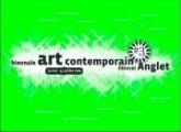 Biennale d'art contemporain d'Anglet