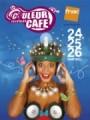 Festival couleur café 2011