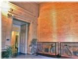 Museum d'histoire naturelle de Toulon