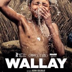 Wallay - Affiche