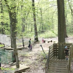 La Forêt des énigmes