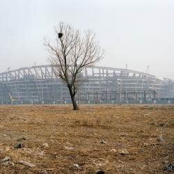 Stade olympique 2005-2008