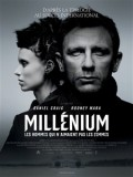 Millnium : les hommes qui n&#039;aimaient pas les femmes